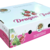 dragon-nam